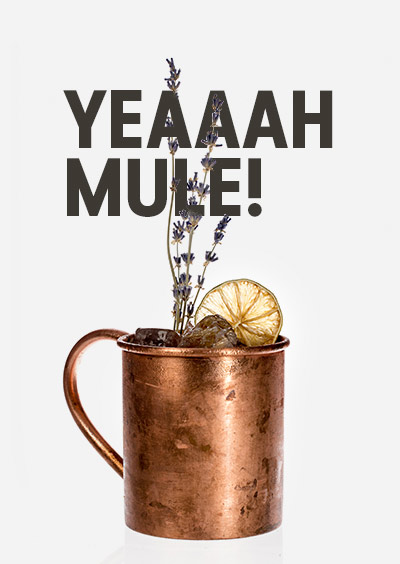 Yeaaah_mule